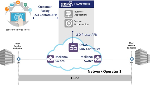 MEF Point-to-point Ethernet Service Project Picture