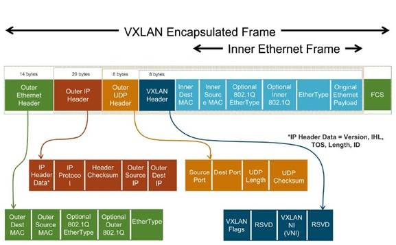 VxLAN EndPoint with INT support Project Picture